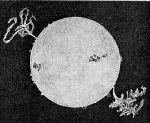 Birkeland Fig-251